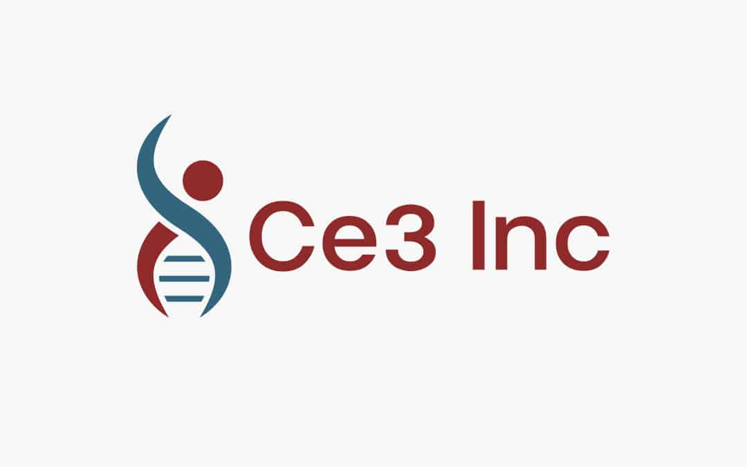Ce3 Consolidates Data Services